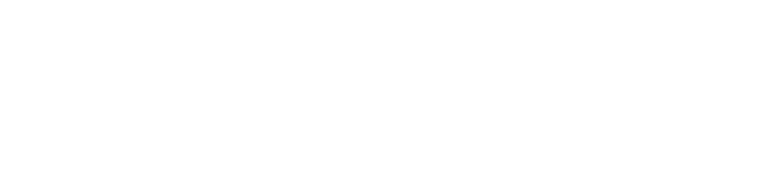 Logo Zwaan Bikes Rotterdam